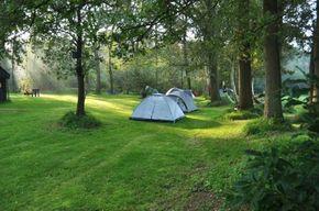 Quels stores et rideaux M1 choisir pour un camping ?